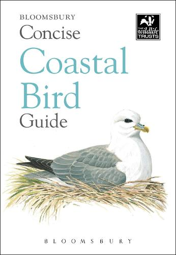 Concise Coastal Bird Guide - The Wildlife Trusts (Paperback)