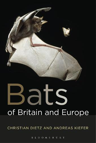 Bats of Britain and Europe (Paperback)