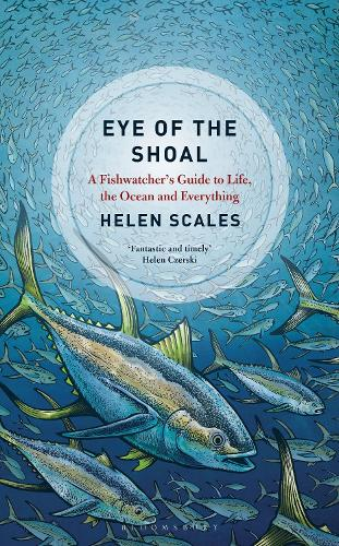 Eye of the Shoal: A Fishwatcher's Guide to Life, the Ocean and Everything (Hardback)