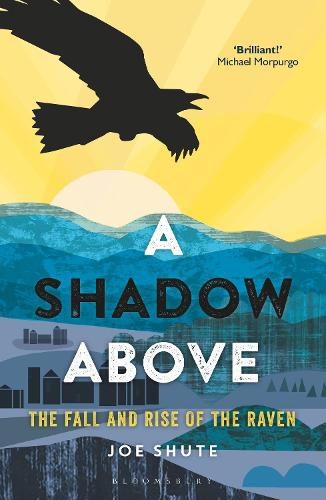 A Shadow Above: The Fall and Rise of the Raven (Hardback)
