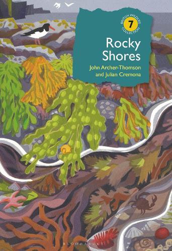 Rocky Shores - British Wildlife Collection (Hardback)