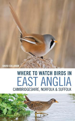 Where to Watch Birds in East Anglia: Cambridgeshire, Norfolk and Suffolk (Paperback)