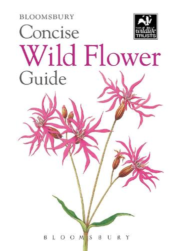 Concise Wild Flower Guide - The Wildlife Trusts (Paperback)