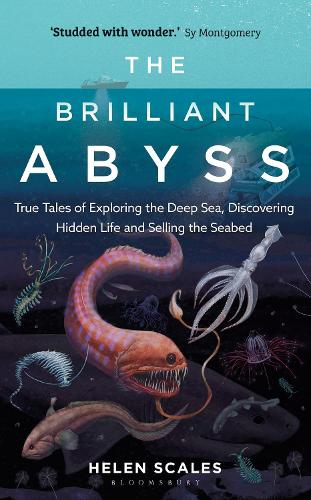 The Brilliant Abyss: True Tales of Exploring the Deep Sea, Discovering Hidden Life and Selling the Seabed (Hardback)