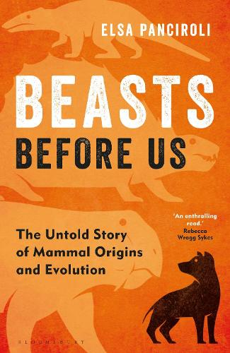 Beasts Before Us: The Untold Story of Mammal Origins and Evolution (Hardback)