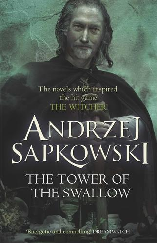 The Tower of the Swallow: Book 4 - The Witcher (Paperback)