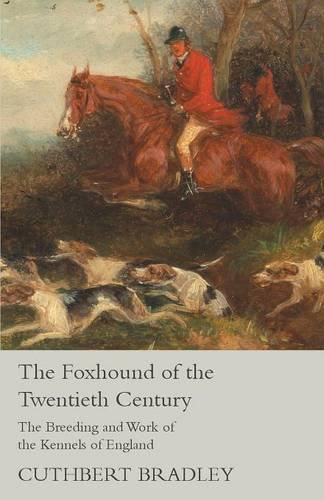 The Foxhound of the Twentieth Century - The Breeding and Work of the Kennels of England (Paperback)