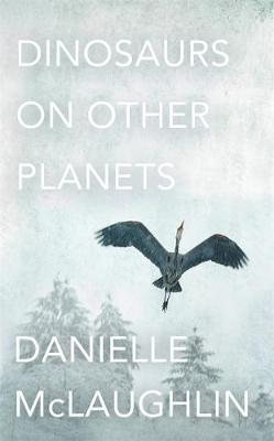 Dinosaurs on Other Planets (Hardback)