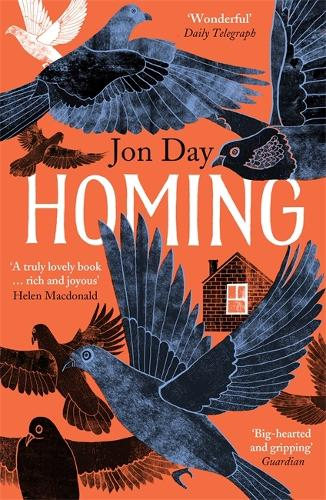 Homing: On Pigeons, Dwellings and Why We Return (Paperback)