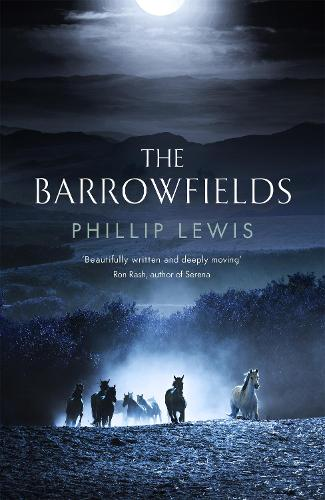 The Barrowfields (Hardback)