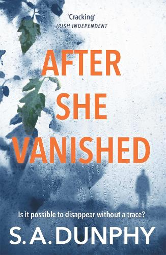 After She Vanished - David Dunnigan (Paperback)