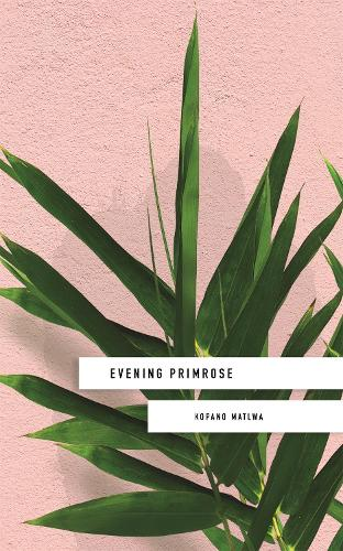 Evening Primrose: a heart-wrenching novel for our times (Paperback)