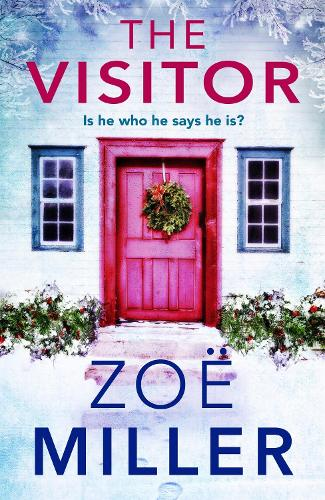 The Visitor: Is he who he says he is? (Paperback)
