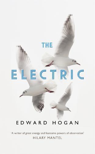 The Electric (Hardback)