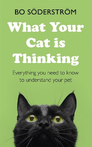 What Your Cat Is Thinking: Everything you need to know to understand your pet (Paperback)