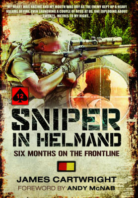 Sniper in Helmand (Paperback)