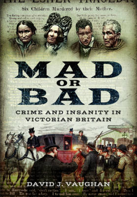 Mad or Bad: Crime and Insanity in Victorian Britain (Paperback)