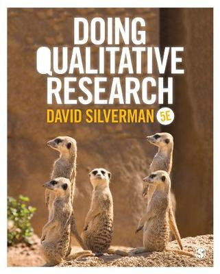 Doing Qualitative Research (Paperback)