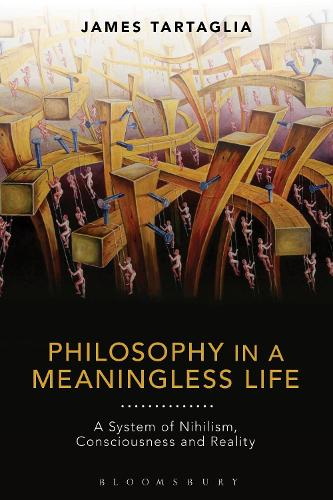 Philosophy in a Meaningless Life: A System of Nihilism, Consciousness and Reality (Hardback)