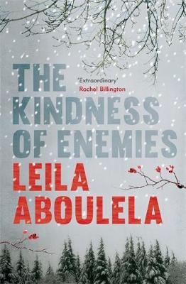 The Kindness of Enemies (Hardback)