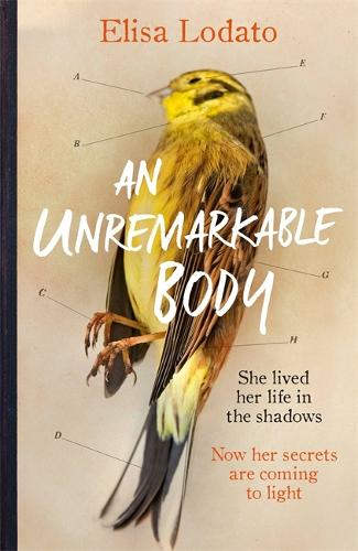 An Unremarkable Body: A stunning literary debut with a twist (Hardback)