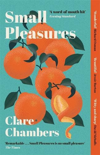 Small Pleasures (Paperback)