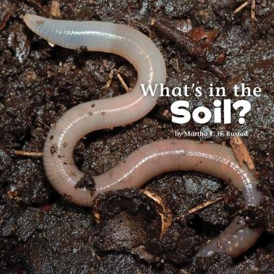 What's in the Soil? - Little Pebble: What's In There? (Hardback)