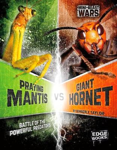 Praying Mantis vs Giant Hornet: Battle of the Powerful Predators - Edge Books: Mini-beast Wars (Paperback)