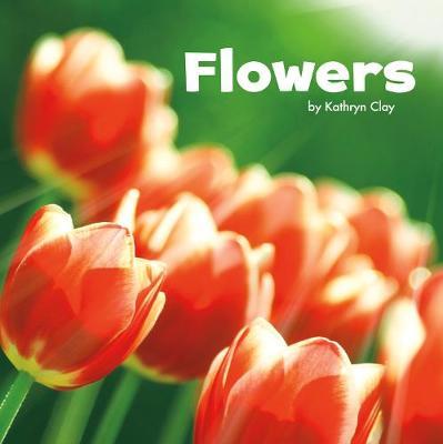 Flowers - Pebble Plus: Parts of Plants (Paperback)