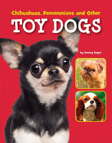 Chihuahuas, Pomeranians and Other Toy Dogs - Edge Books: Dog Files (Paperback)