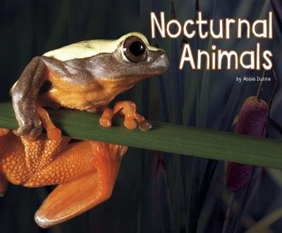 Nocturnal Animals - Pebble Plus: Life Science (Paperback)