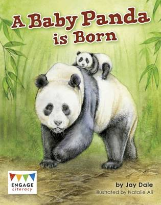 A Baby Panda is Born - Engage Literacy: Engage Literacy White