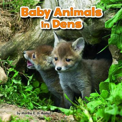 Baby Animals in Dens - Little Pebble: Baby Animals and Their Homes (Hardback)