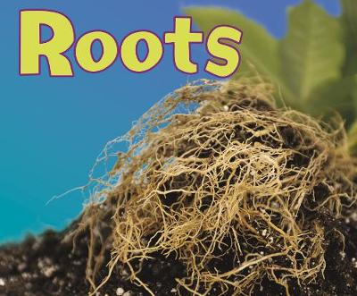 Roots - Pebble Plus: Parts of Plants (Hardback)