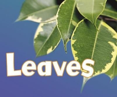 Leaves - Pebble Plus: Parts of Plants (Paperback)
