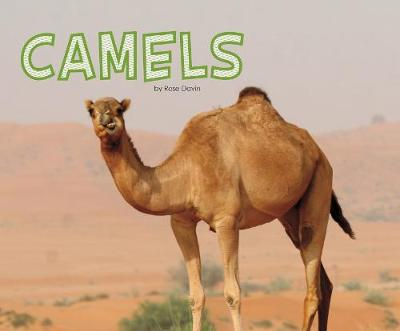 Camels - Pebble Plus: Meet Desert Animals (Hardback)