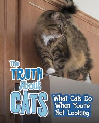 The Truth about Cats: What Cats Do When You're Not Looking - Read Me!: Pets Undercover! (Paperback)