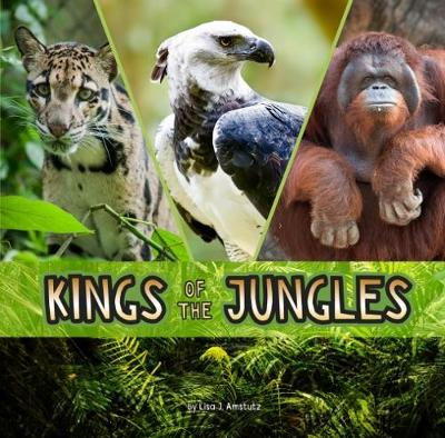 Kings of the Jungles - First Facts: Animal Rulers (Hardback)