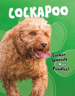 Cockapoo: Cocker Spaniels Meet Poodles! - Top Crossbreed Dogs (Paperback)