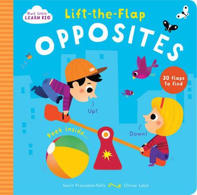 Start Little Learn Big Lift-the-Flap Colours (Board book)
