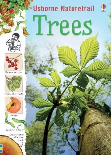 Naturetrail Trees - Nature Trail (Paperback)