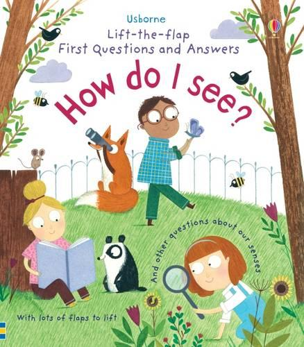 How Do I See? - Lift the Flap First Questions and Answers (Board book)