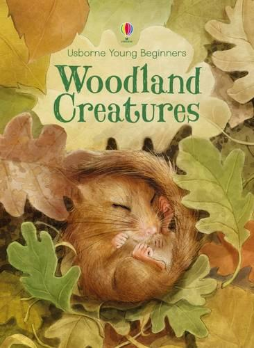 Young Beginners Woodland Creatures - Young Beginners (Hardback)