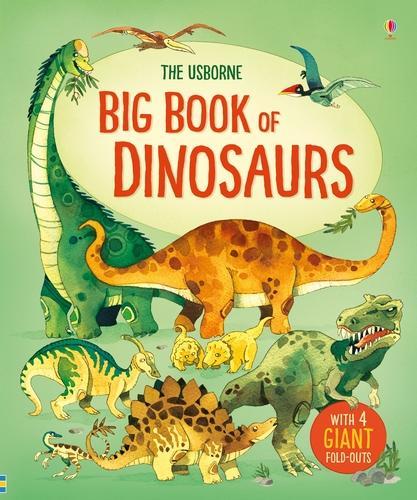 Big Book of Dinosaurs - Big Books (Hardback)