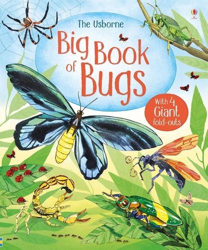 Big Book of Big Bugs - Big Books of Big Things (Hardback)