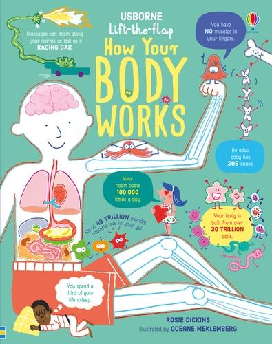 Lift the Flap How Your Body Works - How It Works (Board book)
