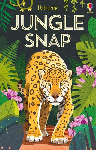 Jungle Snap - Snap Cards