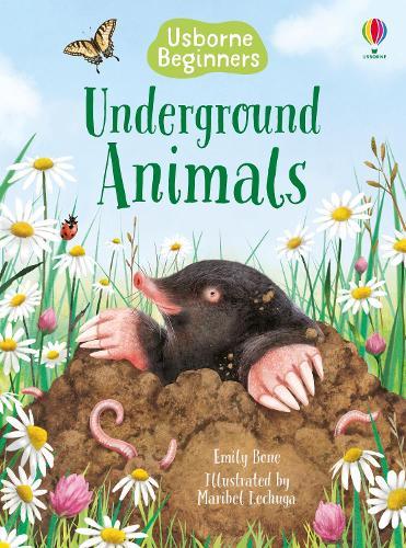 Underground Animals - Beginners (Hardback)