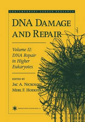DNA Damage and Repair: Volume 2: DNA Repair in Higher Eukaryotes - Contemporary Cancer Research (Paperback)