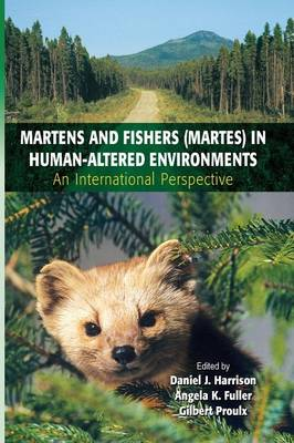 Martens and Fishers (Martes) in Human-Altered Environments: An International Perspective (Paperback)